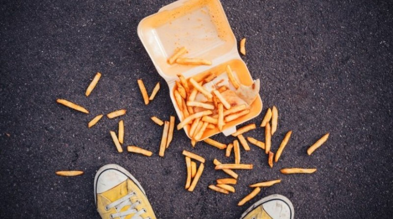 dropped-fries