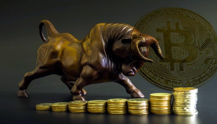 bitcoinbulls-700x400